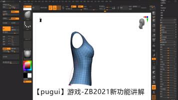 【pugui】游戏▕▕ ZB-2021新功能讲解