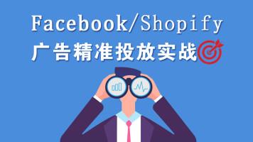 Facebook/Shopify广告精准投放实战课程