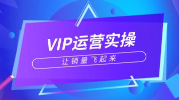 淘宝VIP爆款运营实操系列课程
