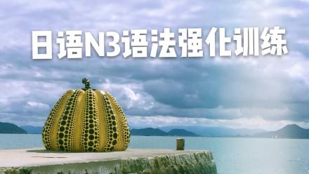 日语N3语法强化训练