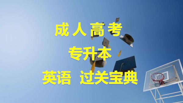 全国成人高考专升本英语成考过关宝典