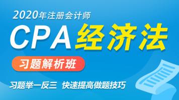 2020CPA注册会计师|经济法|习题班
