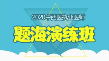 2020年中西医执业医师-题海演练班
