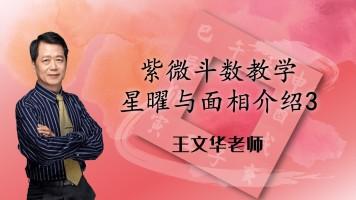 47王文华老师紫微斗数高级篇-星曜与面相介绍3