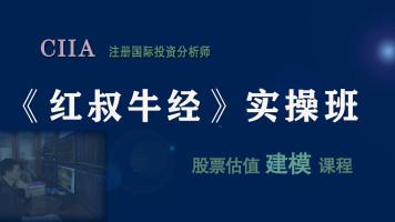 CIIA职业培训【股票估值建模实操】