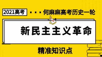 2021高考何麻麻历史文综1919-21世纪