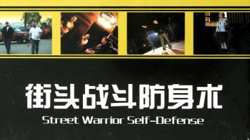 街头战斗防身术一招制敌视频课程