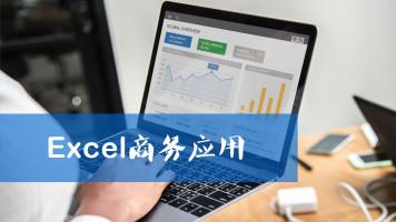 Excel商务应用高级
