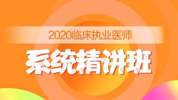 2020年临床执业医师-系统精讲班
