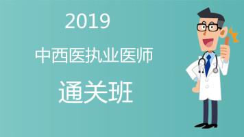 【杏海教育】2019年 中西医结合执业医师 通关班