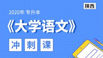 2020年陕西专升本大学语文冲刺预测课