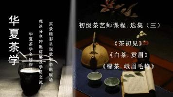 茶艺(师)培训课程——初级茶艺师课程•选集(三)