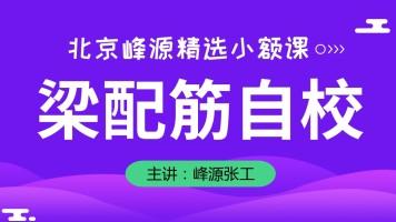 【北京峰源】混凝土精选课程之梁配筋自校