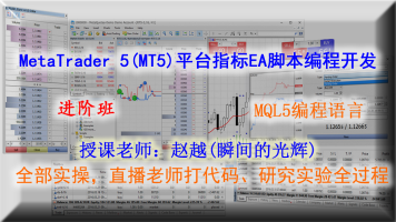 MT5指标EA开发MQL5语言(进阶班)