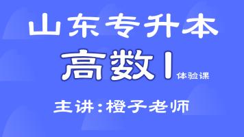 山东专升本考试 高数I (数学I /高等数学I ) 体验课