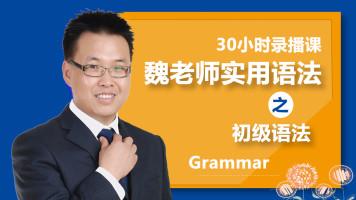 魏老师初级语法-英语初学者和零基础学英语的必备入门课程