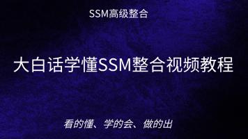 大白话学懂SSM整合视频教程