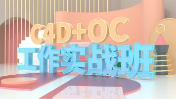 C4D-精英班