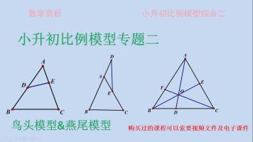 小升初比例模型专题二(燕尾模型、鸟头模型专题训练)