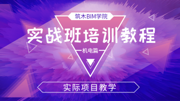BIM软件Revit实战培训教程-机电篇(实际项目为例)