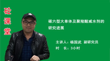 杨国武——碳六型大单体及聚羧酸减水剂的研究进展