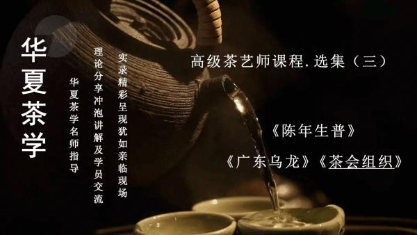 茶艺(师)培训课程——高级茶艺师课程•选集(三)