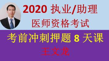 2020精诚医考王文龙-执业/助理医师资格考试-考前冲刺押题8天课