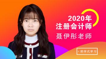 2020年注册会计师审计