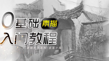 泉鲟老师动物风景授课专场