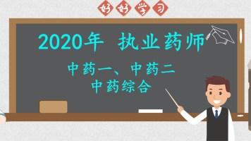 2020年执业药师