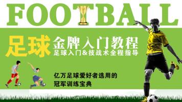 足球入门与实战技巧 全套系统 高清金牌教程