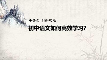 干货:初中语文高效学习法
