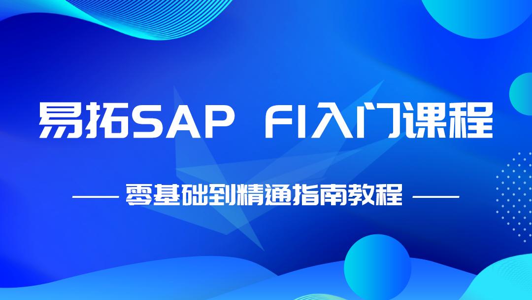 SAP FI入门课程 零基础到精通指南教程
