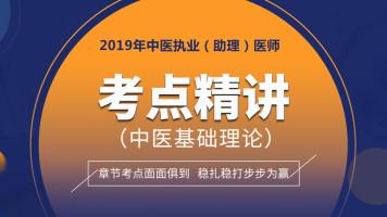 中(西)医执业医师考点精讲 中医基础理论考点精要