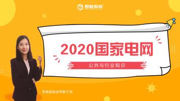 2020国家电网公共与行业知识系列课程