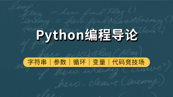 Python编程导论