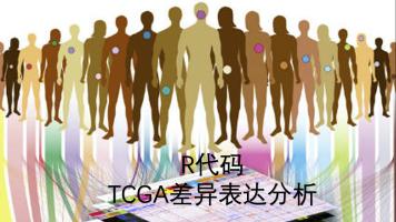 R代码TCGA数据差异表达分析
