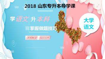 2018年山东专升本大学语文导学课