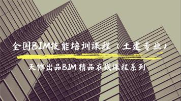 天帷网校·全国BIM技能Revit土建培训课程(建筑+结构+钢筋+族)