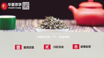 茶艺(师)培训课程—中级茶艺教程试学视频(下)续