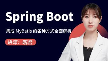 SpringBoot集成MyBatis的各种方式全面解析【图灵学院】