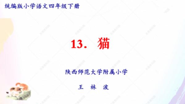特级教师王林波/四年级下册第四单元第13课《猫》