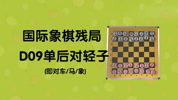 国际象棋残局D09单后对单车、单象、单马残局