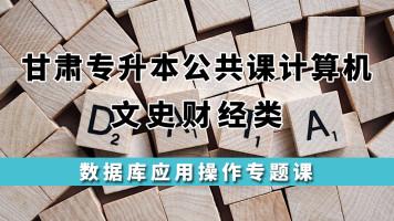 数据库应用/甘肃专升本公共课计算机文史类必修课