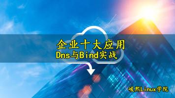 [张彬Linux]企业十大应用-Dns与bind实战
