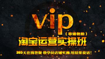 VIP 中小型卖家从零开始淘宝运营爆款打造全系统课程【文睿电商】