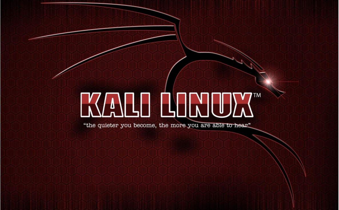 白帽子黑客教你:KaliLinux渗透测试与木马攻防实战技巧