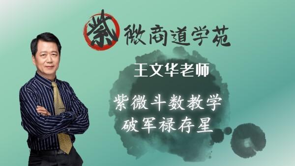 10王文华老师紫微斗数初级篇-破军禄存星