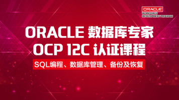 Oracle OCP 12C 数据库专家认证课程-OCA|SQL|数据库管理