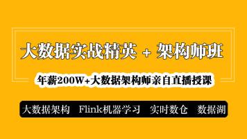大数据精英班|架构/Flink推荐系统/实时数仓/数据湖【大讲台】